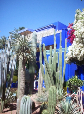 jardin marocain majorelle marrakech trucs et deco. Black Bedroom Furniture Sets. Home Design Ideas